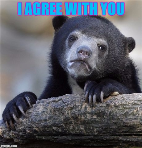 Confession Bear Meme | I AGREE WITH YOU | image tagged in memes,confession bear | made w/ Imgflip meme maker