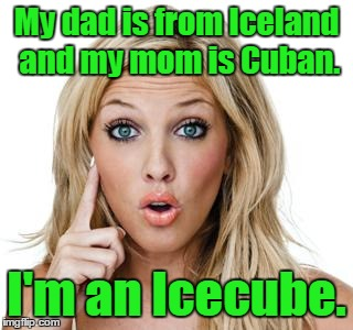 Dumb blonde | My dad is from Iceland and my mom is Cuban. I'm an Icecube. | image tagged in dumb blonde | made w/ Imgflip meme maker