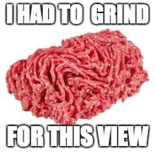 grind | I HAD TO  GRIND FOR THIS VIEW | image tagged in grind,forthisview | made w/ Imgflip meme maker
