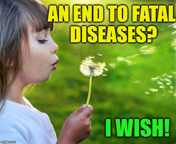 Wishful thinking  :-( | AN END TO FATAL DISEASES? I WISH! | image tagged in dandelion,wish | made w/ Imgflip meme maker