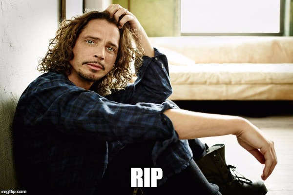 Sad to hear of Chris Cornell's passing.  We have lost another great artist. | RIP | image tagged in chris cornell,rip | made w/ Imgflip meme maker
