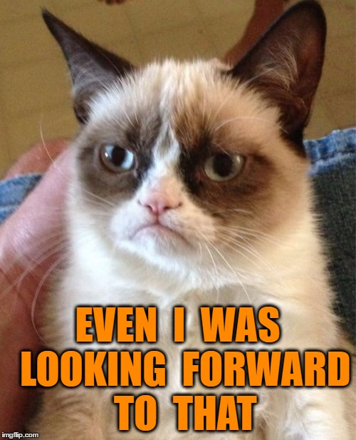 Grumpy Cat Meme | EVEN  I  WAS  LOOKING  FORWARD  TO  THAT | image tagged in memes,grumpy cat | made w/ Imgflip meme maker