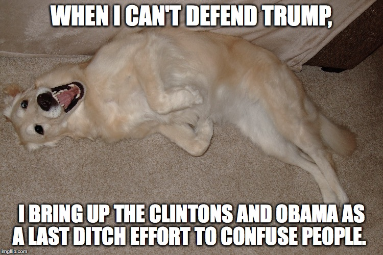 I can't defend Trump so I bring up Hillary | WHEN I CAN'T DEFEND TRUMP, I BRING UP THE CLINTONS AND OBAMA AS A LAST DITCH EFFORT TO CONFUSE PEOPLE. | image tagged in smart dog | made w/ Imgflip meme maker