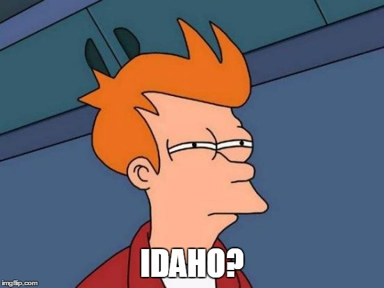 Futurama Fry Meme | IDAHO? | image tagged in memes,futurama fry | made w/ Imgflip meme maker