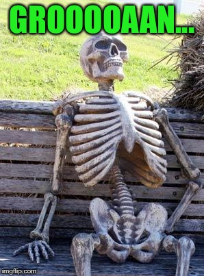 Waiting Skeleton Meme | GROOOOAAN... | image tagged in memes,waiting skeleton | made w/ Imgflip meme maker