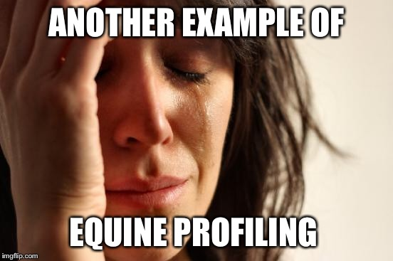 First World Problems Meme | ANOTHER EXAMPLE OF EQUINE PROFILING | image tagged in memes,first world problems | made w/ Imgflip meme maker