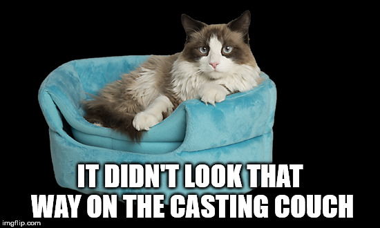 IT DIDN'T LOOK THAT WAY ON THE CASTING COUCH | made w/ Imgflip meme maker