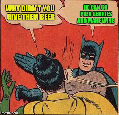 Batman Slapping Robin Meme | WHY DIDN'T YOU GIVE THEM BEER HE CAN GO PICK BERRIES AND MAKE WINE | image tagged in memes,batman slapping robin | made w/ Imgflip meme maker