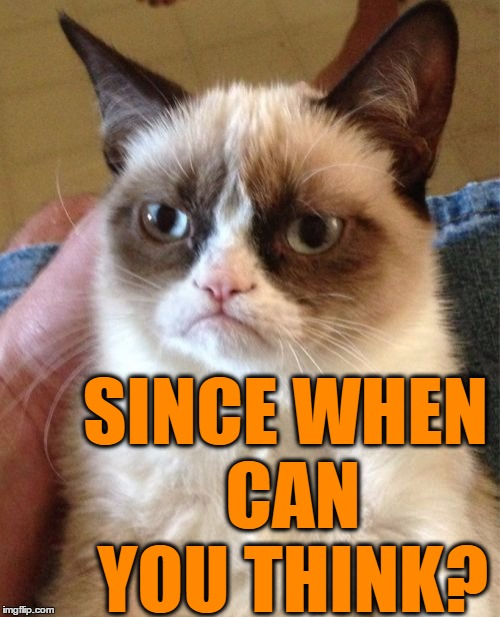 Grumpy Cat Meme | SINCE WHEN CAN YOU THINK? | image tagged in memes,grumpy cat | made w/ Imgflip meme maker