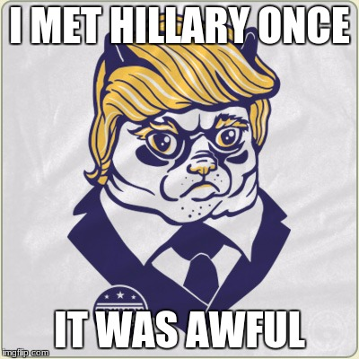 TRUMPY CAT | I MET HILLARY ONCE IT WAS AWFUL | image tagged in vote trump,grumpy cat | made w/ Imgflip meme maker