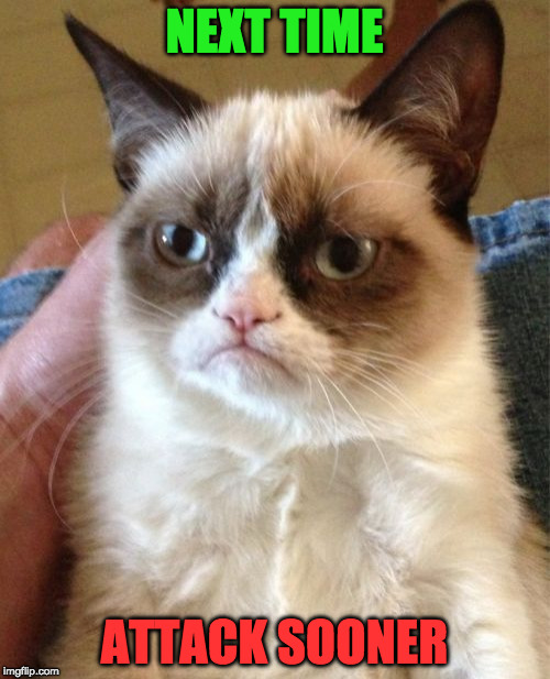 Grumpy Cat Meme | NEXT TIME ATTACK SOONER | image tagged in memes,grumpy cat | made w/ Imgflip meme maker