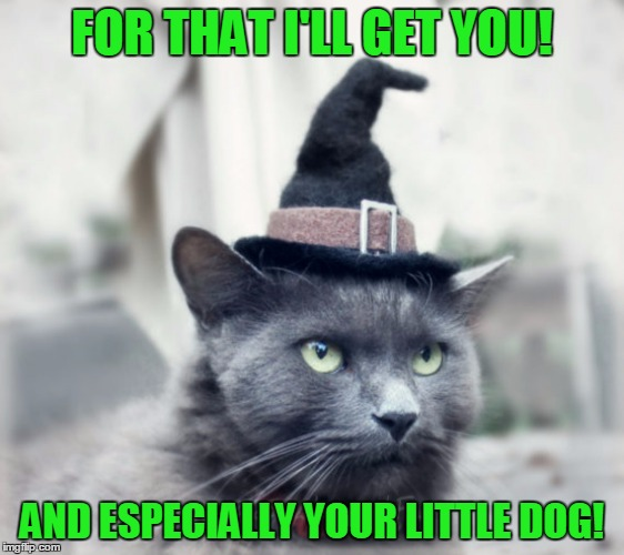 FOR THAT I'LL GET YOU! AND ESPECIALLY YOUR LITTLE DOG! | made w/ Imgflip meme maker