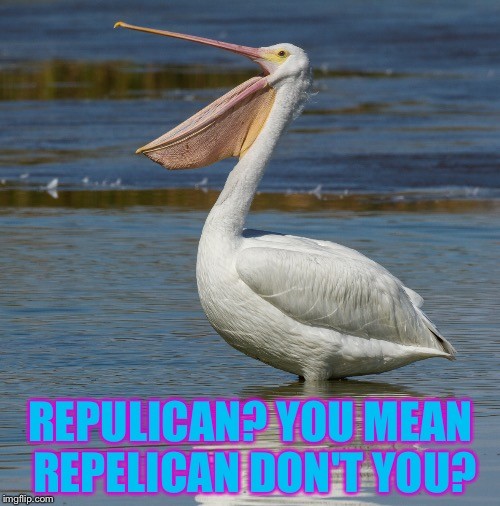 REPULICAN? YOU MEAN REPELICAN DON'T YOU? | made w/ Imgflip meme maker