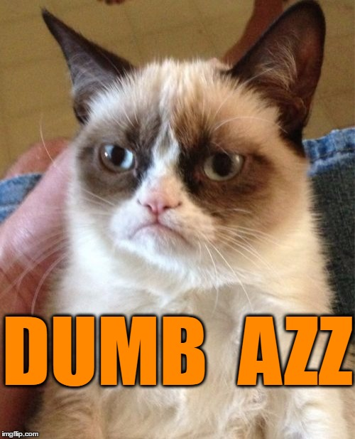 Grumpy Cat Meme | DUMB  AZZ | image tagged in memes,grumpy cat | made w/ Imgflip meme maker