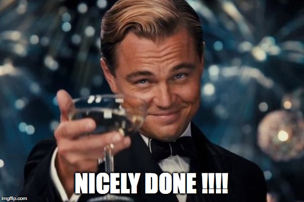 Leonardo Dicaprio Cheers Meme | NICELY DONE !!!! | image tagged in memes,leonardo dicaprio cheers | made w/ Imgflip meme maker