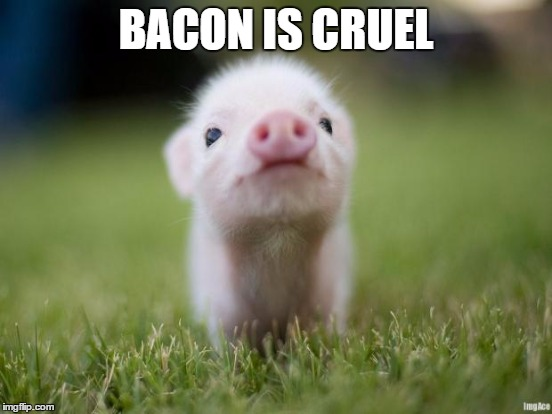 BACON IS CRUEL | made w/ Imgflip meme maker
