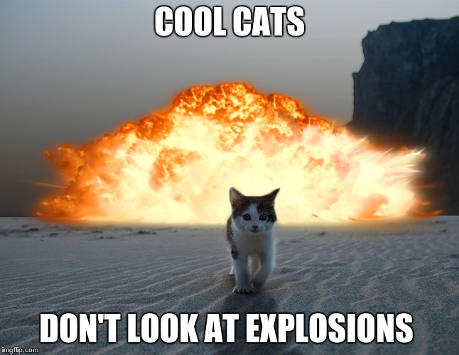 Cool Cat | COOL CATS DON'T LOOK AT EXPLOSIONS | image tagged in cats,explosion,awsome | made w/ Imgflip meme maker
