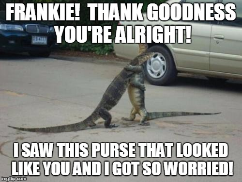 FRANKIE!  THANK GOODNESS YOU'RE ALRIGHT! I SAW THIS PURSE THAT LOOKED LIKE YOU AND I GOT SO WORRIED! | image tagged in memes | made w/ Imgflip meme maker