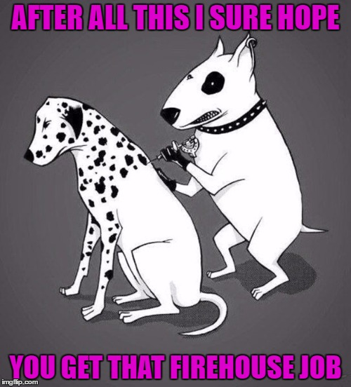 What's the craziest thing you ever did to get a job? | AFTER ALL THIS I SURE HOPE YOU GET THAT FIREHOUSE JOB | image tagged in dalmation tattoo,memes,dogs,funny,animals,tattoos | made w/ Imgflip meme maker