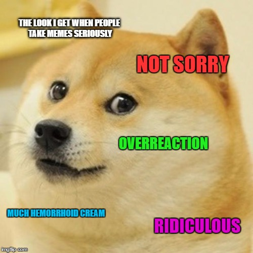 Doge | THE LOOK I GET WHEN PEOPLE TAKE MEMES SERIOUSLY NOT SORRY OVERREACTION MUCH HEMORRHOID CREAM RIDICULOUS | image tagged in memes,doge | made w/ Imgflip meme maker