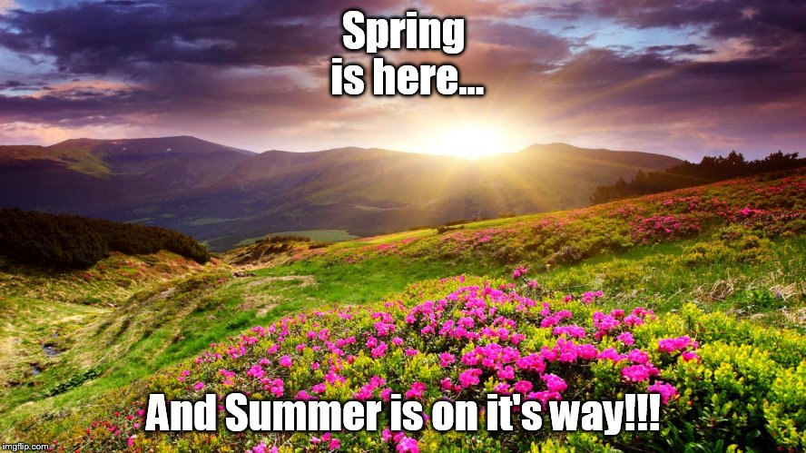 As seasons change | Spring is here... And Summer is on it's way!!! | image tagged in field of flowers,memes,seasons,spring,summer,good times | made w/ Imgflip meme maker