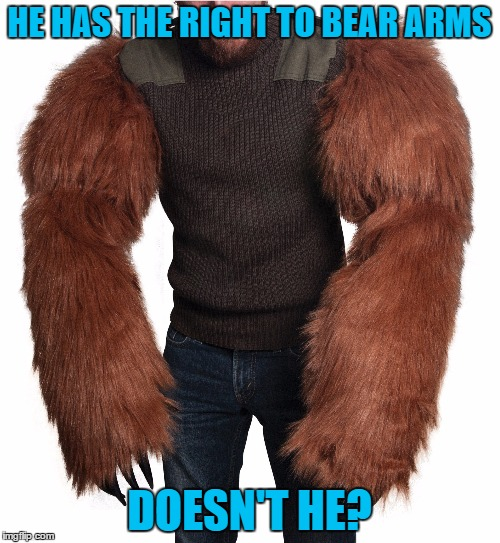 HE HAS THE RIGHT TO BEAR ARMS DOESN'T HE? | made w/ Imgflip meme maker