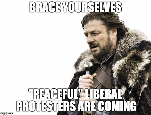 "Brace Yourselves X is Coming Meme | BRACE YOURSELVES ""PEACEFUL"" LIBERAL PROTESTERS ARE COMING 