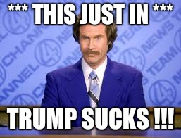 *** THIS JUST IN *** TRUMP SUCKS !!! | image tagged in anchor man | made w/ Imgflip meme maker