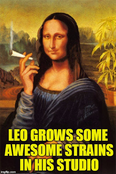LEO GROWS SOME AWESOME STRAINS IN HIS STUDIO | made w/ Imgflip meme maker
