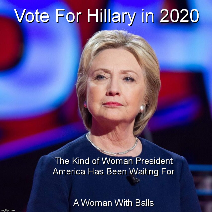 In the Meantime, A Little Satire While We're Waiting For Jesus, Batman or Superman ... or 4 Years ...  To Save Us From Mr. Trump | image tagged in hillary,2020 | made w/ Imgflip meme maker
