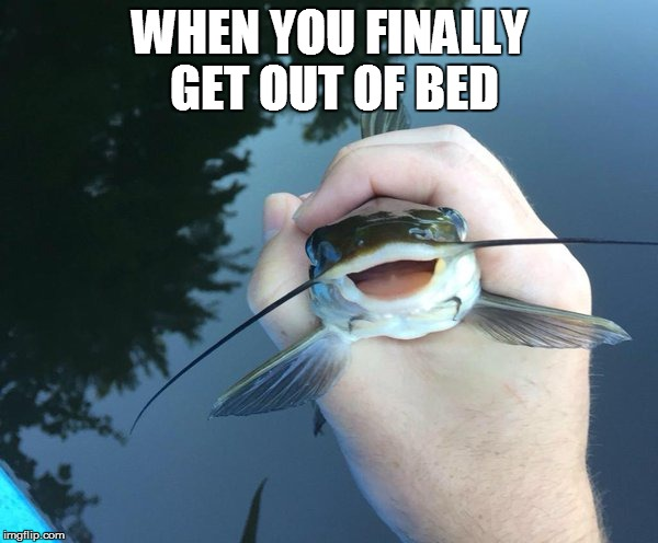 Trying to be a little more active like.. | WHEN YOU FINALLY GET OUT OF BED | image tagged in happy catfish,achievment unlocked | made w/ Imgflip meme maker