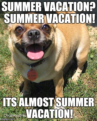 ITS ALMOST SUMMER VACATION