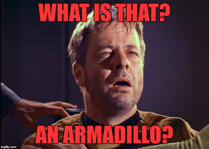 WHAT IS THAT? AN ARMADILLO? | made w/ Imgflip meme maker