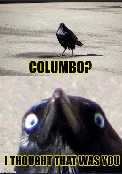 COLUMBO? I THOUGHT THAT WAS YOU | made w/ Imgflip meme maker