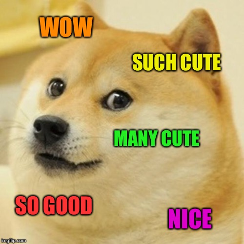 Doge Meme | WOW SUCH CUTE MANY CUTE SO GOOD NICE | image tagged in memes,doge | made w/ Imgflip meme maker