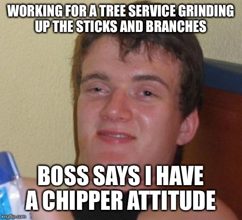 hi ho hi ho it off to grind I go | WORKING FOR A TREE SERVICE GRINDING UP THE STICKS AND BRANCHES BOSS SAYS I HAVE A CHIPPER ATTITUDE | image tagged in memes,10 guy,funny | made w/ Imgflip meme maker