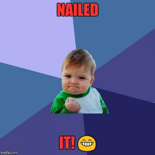 Success Kid Meme | NAILED IT!  | image tagged in memes,success kid | made w/ Imgflip meme maker