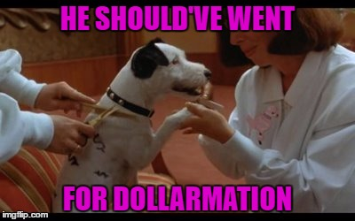 HE SHOULD'VE WENT FOR DOLLARMATION | made w/ Imgflip meme maker