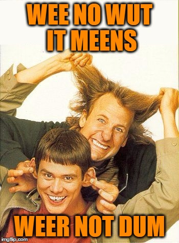DUMB and dumber | WEE NO WUT IT MEENS WEER NOT DUM | image tagged in dumb and dumber | made w/ Imgflip meme maker