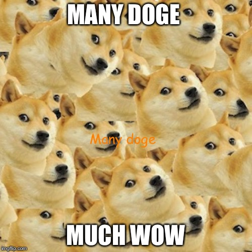 MANY DOGE MUCH WOW | image tagged in many doge | made w/ Imgflip meme maker