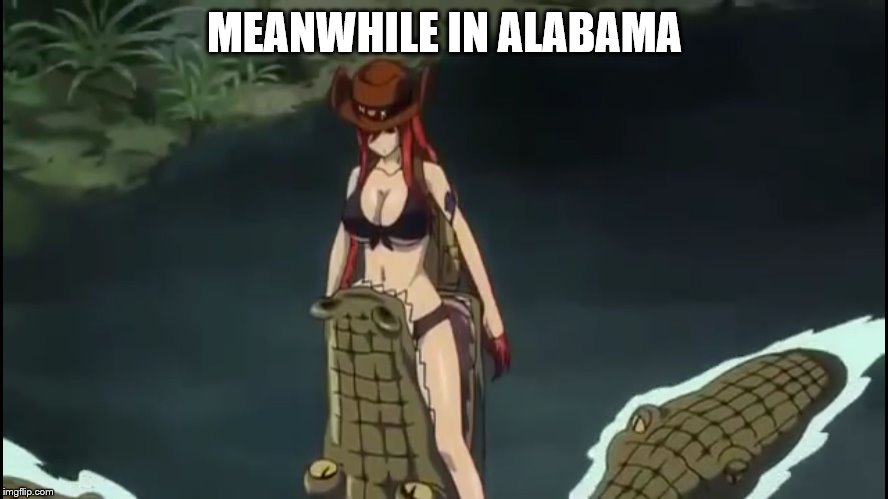 MEANWHILE IN ALABAMA | image tagged in anime animal grab | made w/ Imgflip meme maker