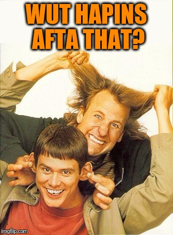 DUMB and dumber | WUT HAPINS AFTA THAT? | image tagged in dumb and dumber | made w/ Imgflip meme maker