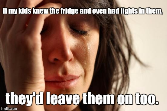 First World Problems Meme | If my kids knew the fridge and oven had lights in them, they'd leave them on too. | image tagged in memes,first world problems | made w/ Imgflip meme maker