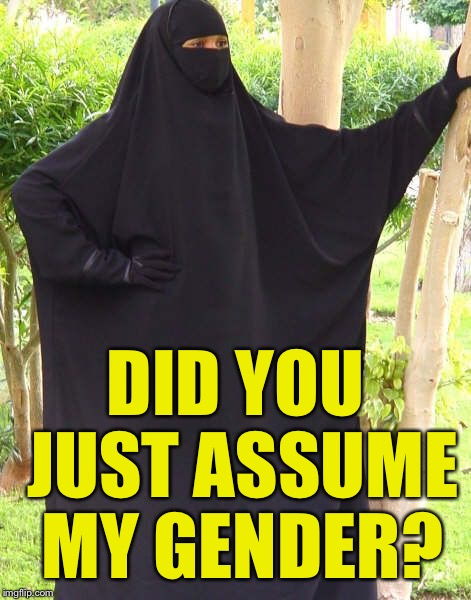 DID YOU JUST ASSUME MY GENDER? | image tagged in did you just assume my gender | made w/ Imgflip meme maker