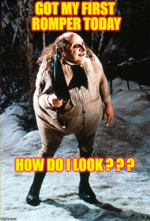 No, Just No.... Don't Ever Do This | GOT MY FIRST ROMPER TODAY HOW DO I LOOK ? ? ? | image tagged in danny devito penguin,romper,romphim | made w/ Imgflip meme maker