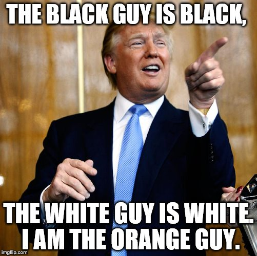 Donald Trump | THE BLACK GUY IS BLACK, THE WHITE GUY IS WHITE. I AM THE ORANGE GUY. | image tagged in donald trump | made w/ Imgflip meme maker