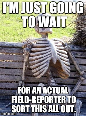 Waiting Skeleton Meme | I'M JUST GOING TO WAIT FOR AN ACTUAL FIELD-REPORTER TO SORT THIS ALL OUT. | image tagged in memes,waiting skeleton | made w/ Imgflip meme maker