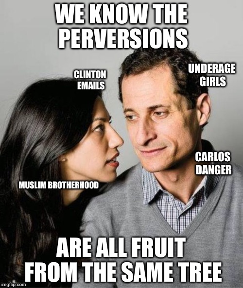Huma Abedin Anthony Weiner | WE KNOW THE PERVERSIONS ARE ALL FRUIT FROM THE SAME TREE CLINTON EMAILS CARLOS DANGER UNDERAGE GIRLS MUSLIM BROTHERHOOD | image tagged in huma abedin anthony weiner | made w/ Imgflip meme maker