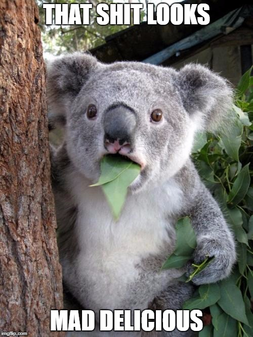 Surprised Koala Meme | THAT SHIT LOOKS MAD DELICIOUS | image tagged in memes,surprised koala | made w/ Imgflip meme maker