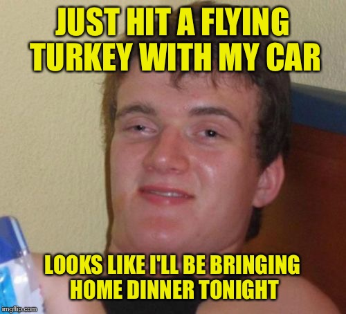 It flew out of nowhere... | JUST HIT A FLYING TURKEY WITH MY CAR LOOKS LIKE I'LL BE BRINGING HOME DINNER TONIGHT | image tagged in memes,10 guy | made w/ Imgflip meme maker